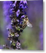 The Bee Hover Metal Print