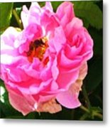 The Bee In The Rose Metal Print