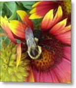 The Bee Keeper Metal Print