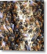 The Bees Hive It Metal Print