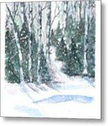The Birch Trees Metal Print