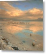 The Birds And The Ice Metal Print