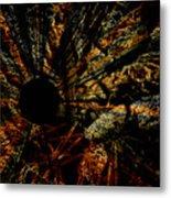 The Black Hole Metal Print
