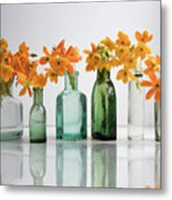the Blooming yellow Ornithogalum Dubium in a transparent bottle instead vase Metal Print