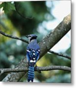 The Blues Song Metal Print