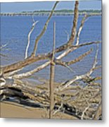 The Boneyard Metal Print