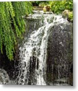 The Botanic Waterfall  Metal Print by Lori Frisch