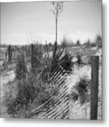 The Broken Fence Metal Print