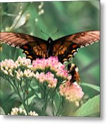 The Butterfly And The Bumblebee Metal Print