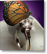 The Butterfly And The Engagement Ring Metal Print
