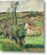 The Cabbage Slopes Metal Print