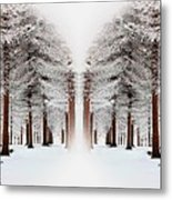 The Calm Of Winter In The Woods Metal Print