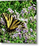 The Canadian Tiger Swallowtail Metal Print