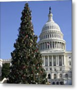 The Capitol Christmas Tree Is Decorated Metal Print