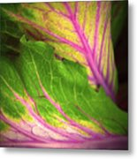 The Caress Metal Print