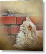 The Cat And The Mouse Metal Print