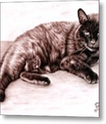 The Cat Metal Print