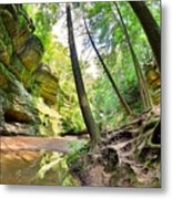 The Caves And Trail At Old Man's Cave Hocking Hills Ohio Metal Print