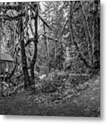 The Cedar Creek Mill Trail Metal Print