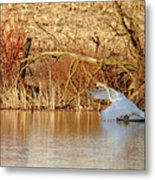 The Chase Is Over Metal Print