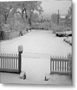 The Cold Embrace Metal Print
