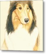 The Collie Metal Print by Tim Ernst