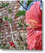 The Color Of Love Metal Print