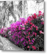 The Color Purple Metal Print