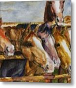 The Colorado Horse Rescue Metal Print