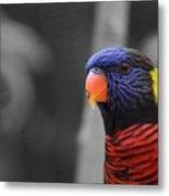 The Colorful Bird Metal Print