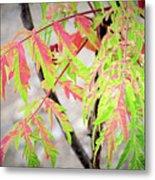 The Colors Of Shumac 3 Metal Print
