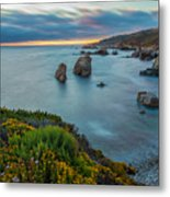 The Colors Of Summer Metal Print