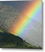 The Colors Of The Rainbow Metal Print