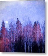 The Colours Of The Moon Metal Print