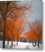 The Colours Of Winter Metal Print