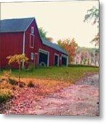 The Cottonwood In Fall Metal Print
