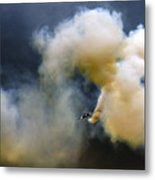 The Crazy Flight Metal Print