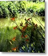The Creek At The Old Mill Metal Print