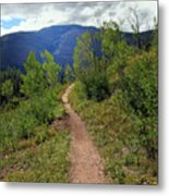 The Crooked Path Metal Print