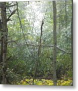 The Cross In The Woods Metal Print