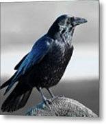 The Crow Metal Print