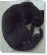 The Curled Black Cat Metal Print