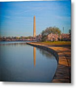 The Curve Of The Basin Metal Print