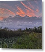 The Daily Disappearing Act Metal Print