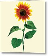 The Dancing Sunflower Metal Print
