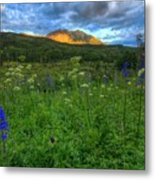 The Dawning Of Majesty Metal Print