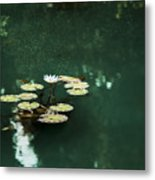 The Depths Of Lily Metal Print