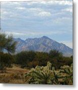 The Desert Landscape Metal Print