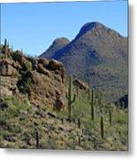 The Desert Mountains Metal Print