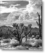The Desert Speaks Metal Print